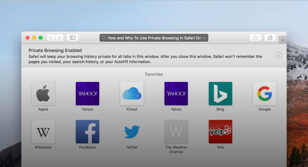 Private browsing in Safari: All you need to know