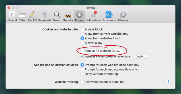Delete all browsing data in Safari