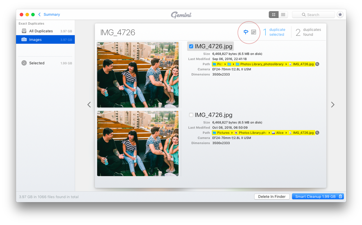 Screenshot of Gemini, The Duplicate Photo Finder for Mac: selecting duplicates
