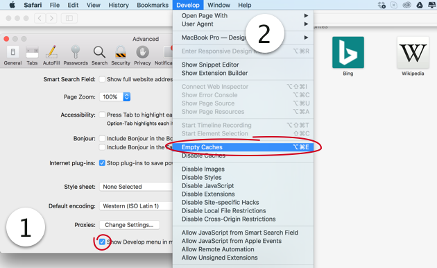 How to cleanup Safari cache files manually