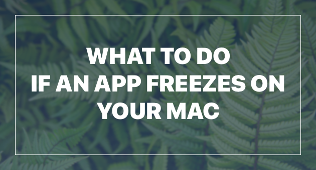 What to do if an app freezes on your Mac